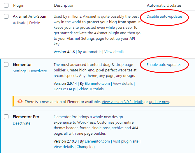 wordpress 5 5 auto update