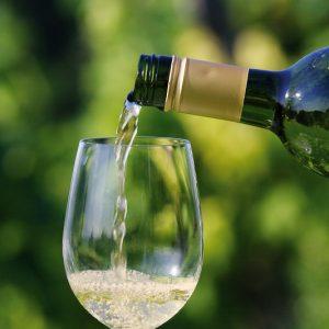 zveza zadrug 05 fotografiranje vina galantes