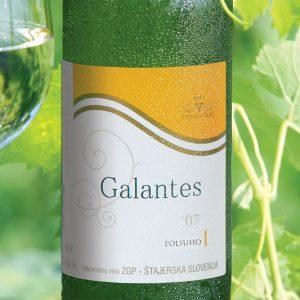zveza zadrug 06 fotografiranje vina galantes