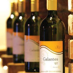 zveza zadrug 09 fotografiranje vina galantes